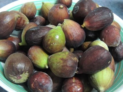 #Fig Jam